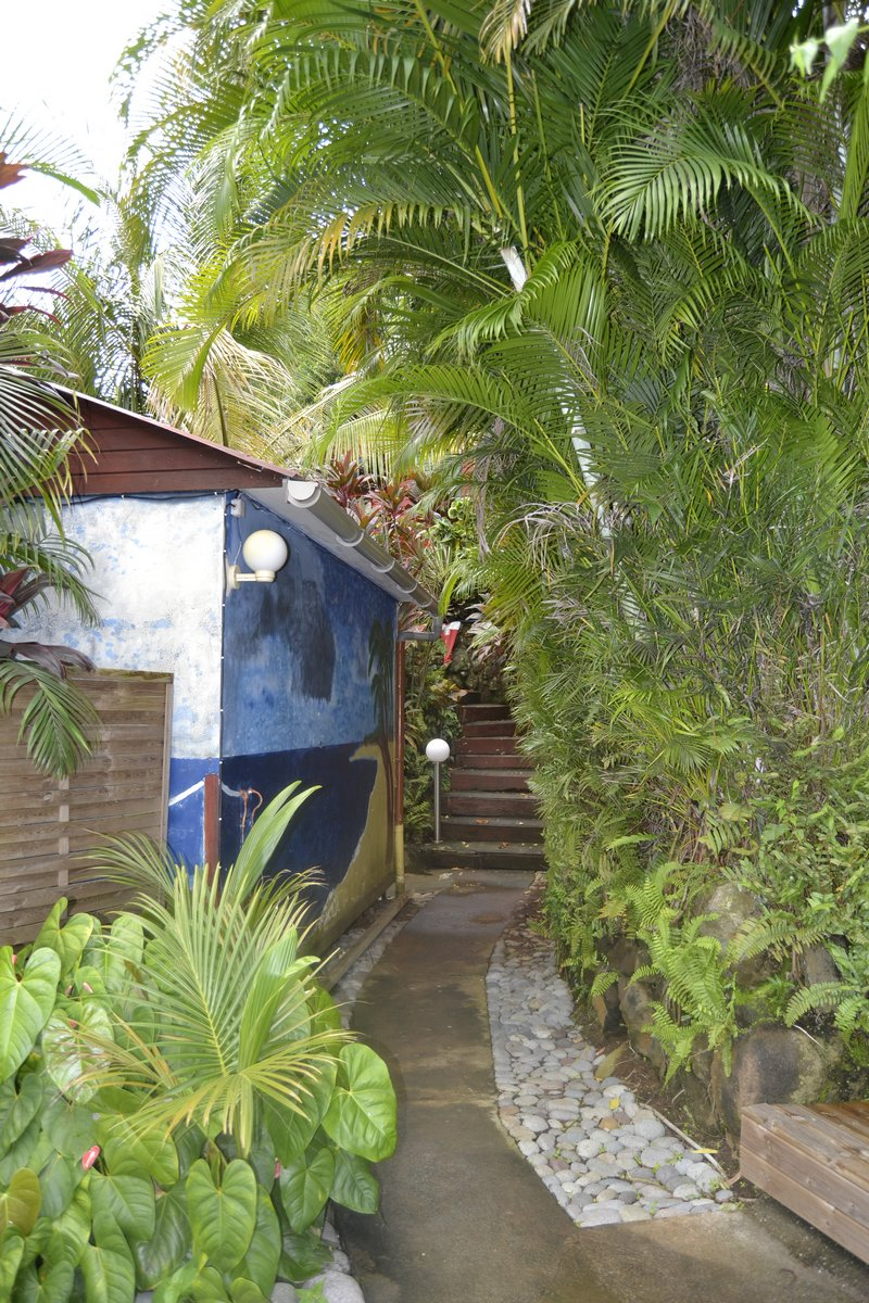 Le jardin tropical an eol cara bes for Jardin tropical guadeloupe